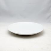 平皿(中)・JSスノー